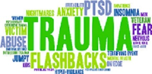 PTSD: Non-traditional Treatment Modalities, Community and Cultural Issues - Part 2